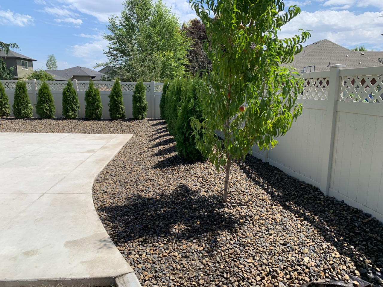 Tree planting and landscape management in Boise