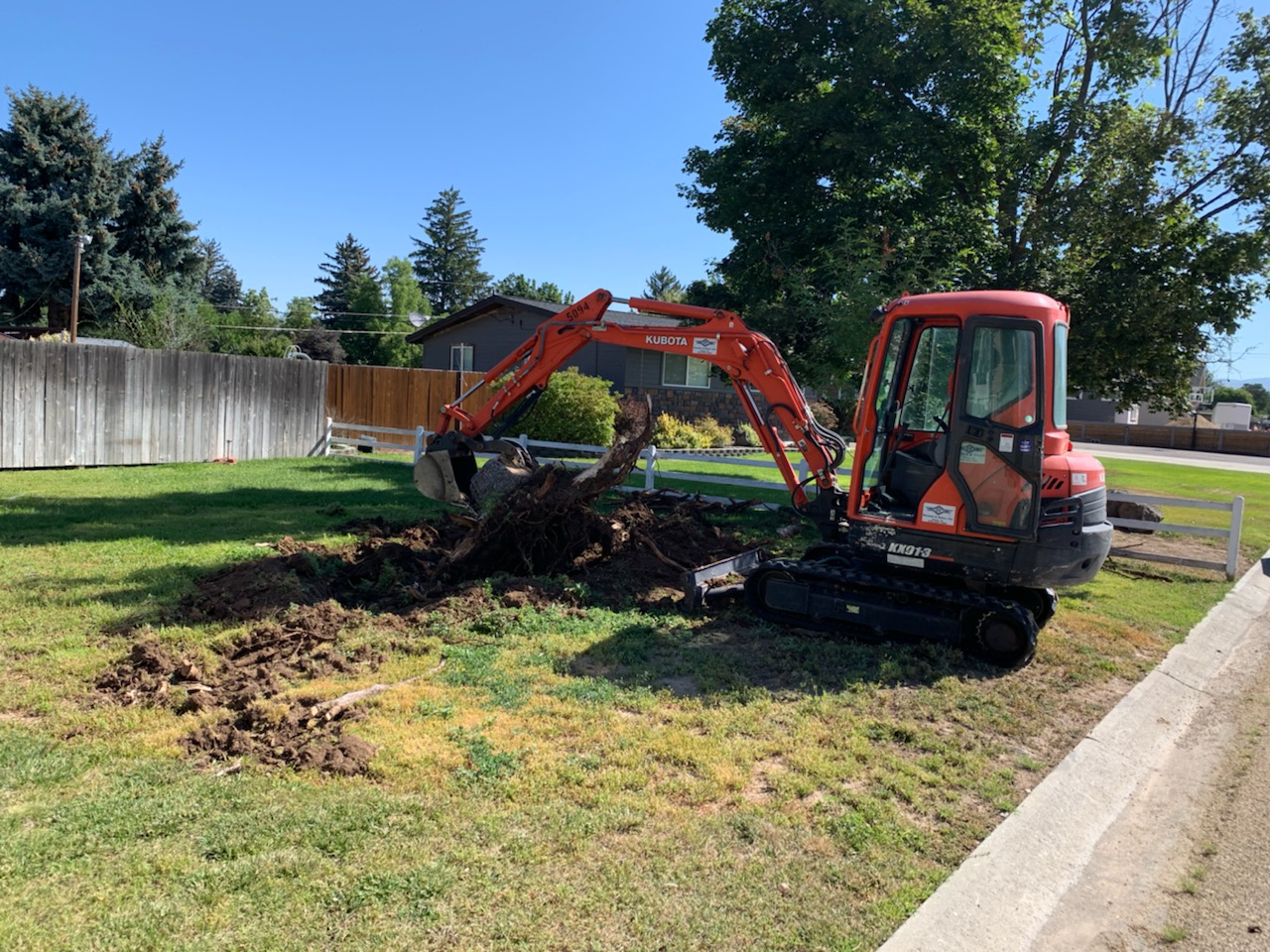 Cleaning up tree & shrub debris in Boise